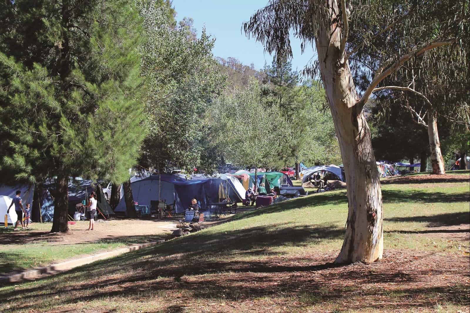 Cotter Campground. Photo courtesy of Mark Will.