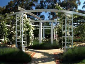 Arbor in the centre of the Ladies Garden
