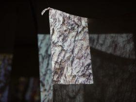 the witness tree by Judy Watson, 2018, video installation, muslin cloth, charcoal, ochre, gate posts