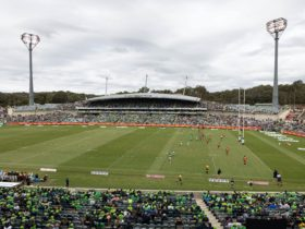 Field of play with a sea of green in the stands