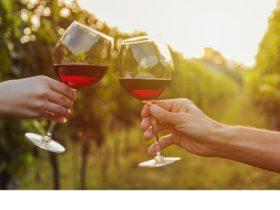 Let us customise a Grape Escape wine tour for you.