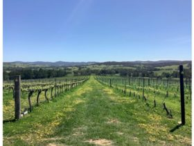 Let's Go Places Canberra Grape Escape wine tours enable you to sample award winning wines.