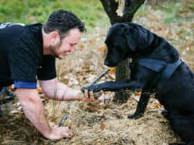 Farmer with his dog and truffle