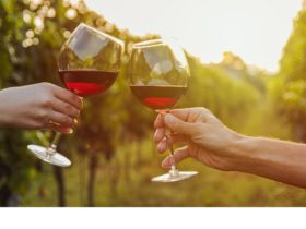 Canberra's wine district has many boutique wineries offering tasting experiences for wine lovers