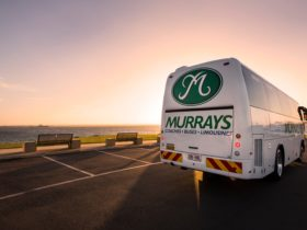 A Murrays Coach at sunrise