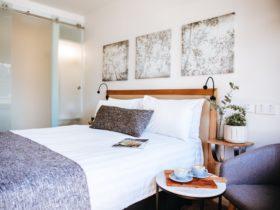 Wagga Wagga Accommodation Executive Queen Room