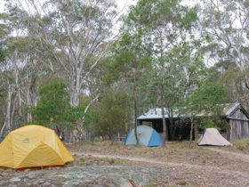 Tents at Boyd River campground, Kanangra-Boyd National Park. Photo: Nick Cubbin © DPIE