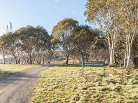 Gravel road and sign at Bullocks Hill campground, northern Kosciuszko National Park. Photo: Murray