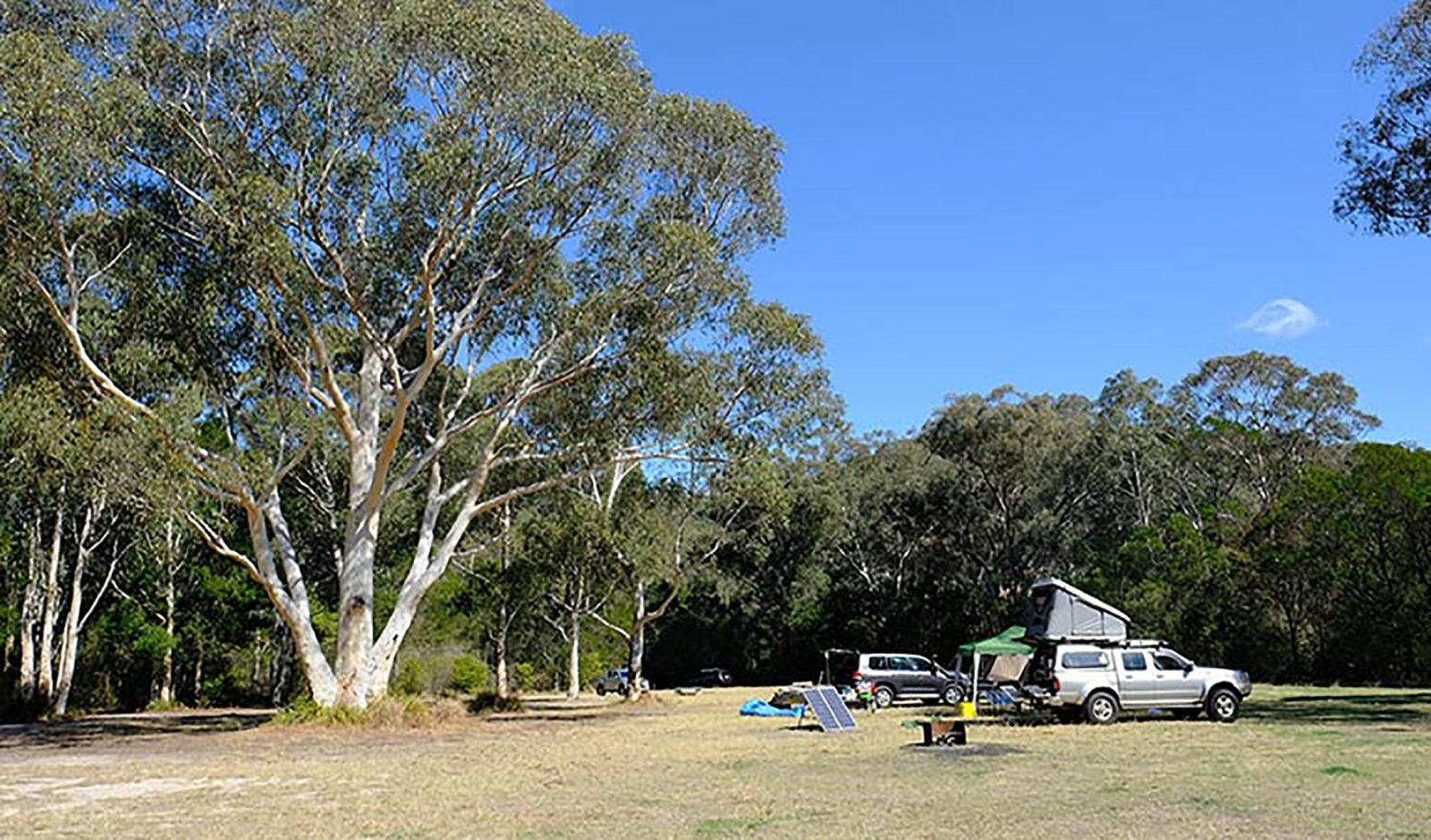 Burralow Creek campground, Blue Mountains National Park