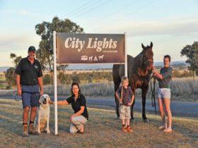 City Lights Caravan Park Tamworth welcomes you