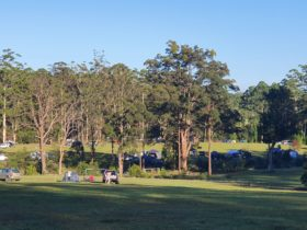 Coffs Harbour Camping