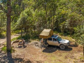A man cooking at a fire pit next to his vehicle at Devils Hole campground in Barrington Tops State