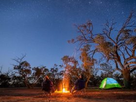 Campers stargazing by the fire at Emu Lake campground in Kinchega National Park. Photo: John