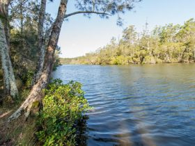 Ferny Creek campground, Wallingat National Park. Photo: John Spencer/NSW Government