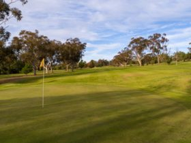 Junee Golf Club Primitive Camping