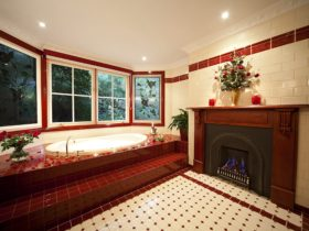 Mahogany fireplace spa bathroom