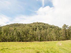 Mountain Arm campground, Yengo National Park. Photo: John Spencer/DPIE