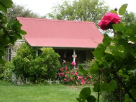 Poppys Cottage Farmstyle Bed and Breakfast