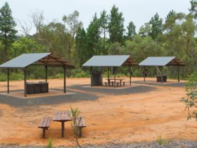 Picnic tables at the Sculpture in the Scrub campground. Photo: Rob Cleary/DPIE