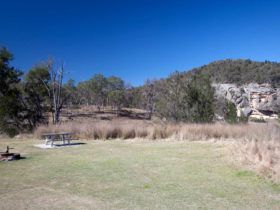 Spring Gully campground, Goulburn River National Park. Photo: Nick Cubbin/NSW Government