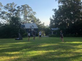 Basketball on the lawn