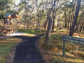 A picnic shelter among trees with a sign to Tia Falls lookout at Tia Falls campground, Oxley Wild