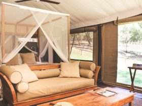 Glamping Tent Lounge