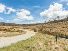 Wares Yards campground, Kosciuszko National Park. Photo: Murray Vanderveer/NSW Government