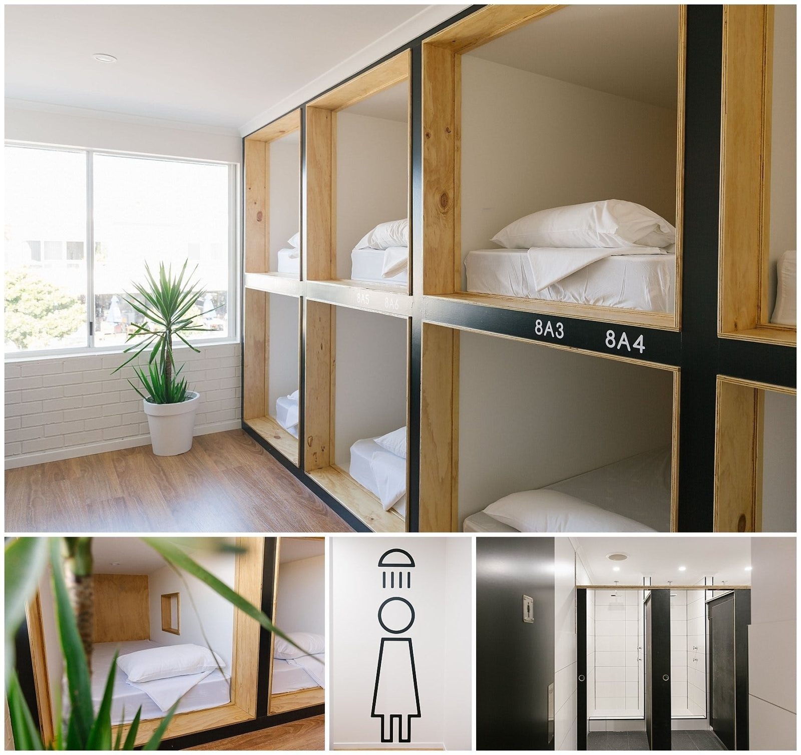 Modern, clean and secure dorm share and private rooms available to suit any budget.