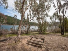 Yolde campground, Koscisuzko National Park. Photo: Murray Vanderveer/NSW Government