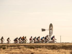 Cycling loop bike riding Deniliquin