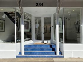 A photo of the front entrance to Art2Muse Gallery with blue tiled steps and white exterior