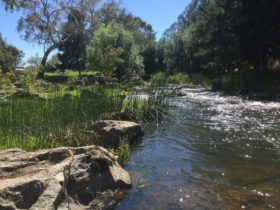 Bakers Shaft Reserve