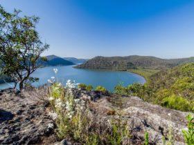 Coba Ridge to Collingridge Point walking track, Marramarra National Park