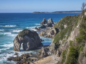 Walks, Bermagui, NSW, south Coast, Sapphire Coast, Horse Head Rock