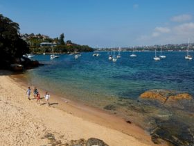 Friends enjoying a walk along Milk Beach on the Hermitage Foreshore Track, Vaucluse in Sydney