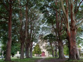 St James Church, looking through The Avenue of Trees