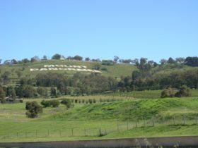 Mount panorama sign on mountain side, Bathurst.