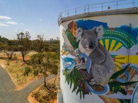Narrandera Water Tower Art Trail