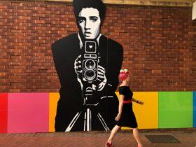 Elvis Public Art