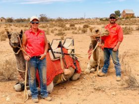 Petah and Duncan with camels Yatungka & Harold in the beautiful setting of Historic Silverton