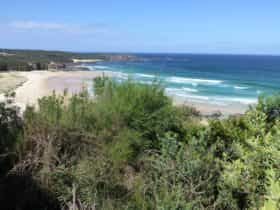 South Pacific Heathland Reserve