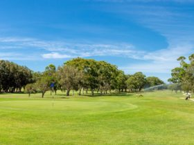 South West Rocks Country Club – Golf Course