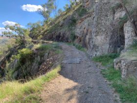Bridle Track, Bathurst, four wheel drive, camping, Fishing, Hill End