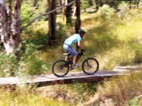 The Steps Mountain Bike Park - berms and bridges