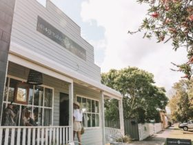 Boutique shopping in Gladstone_Macleay Valley Coast