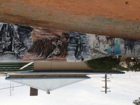 Ungarie War Murals
