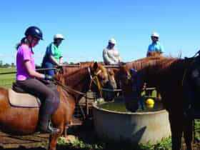 Western Plains Riding Centre