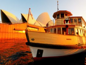 Vintage ferry Proclaim gets you in the heart of the action on Sydney Harbour