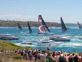 Boxing Day Race Start seen From South Head